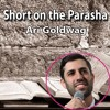 Short on the Parasha