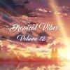 Dropical Vibes Volume 12