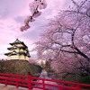Song For Japan - Nobuyuki Tsujii