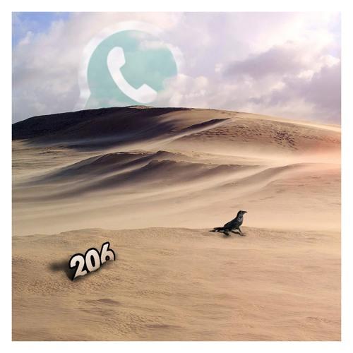 206: WhatsApp Bike Smash Ltd