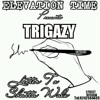 Trigazy - Letter To Shatta Wale (Mixed By LeetyCreation)