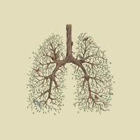 Vancouver Sleep Clinic - Lung (Nubbz Remix)
