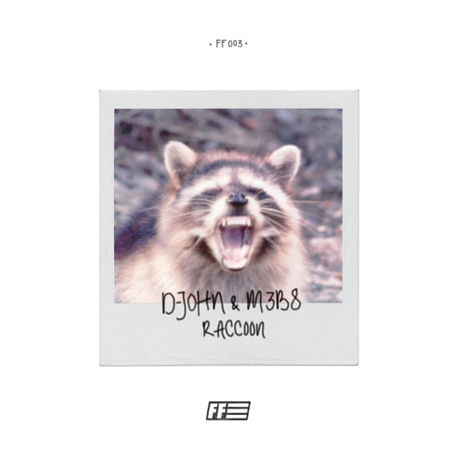 D-John & M3B8 - Raccoon (Original mix)