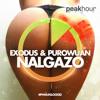 Exodus & PuroWuan - NALGAZO (Original Mix) *FREE DOWNLOAD*