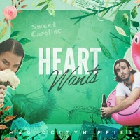 Magic City Hippies - Heart Wants