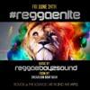 REGGAE BOYZ SOUND AT REGGAE NITE IN MINNEAPOLIS JUNE 2016