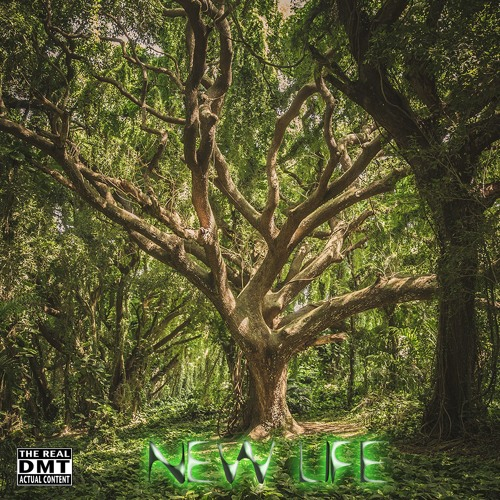 New Life - The Real DMT - Free Download