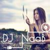 DJ NaaB - Hello (Adele)