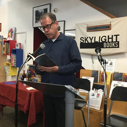 Blind Spot by Harold Abramowitz at Skylight Books
