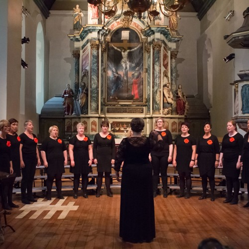 Coralua 2016 - Vår Frue kirke, Trondheim (Norway)