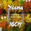 Yoona & 10cm - Deoksugung Stonewall Walkway(Remix)
