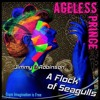 AGELESS PRINCE   Jimmy D Robinson &  A Flock of Seagulls