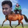 Kennis Heste