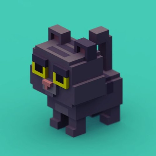 Tito, The Lost Cat