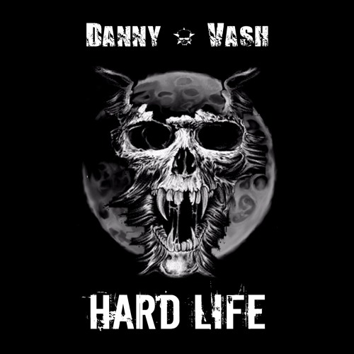 danny-vash-and-hard-life