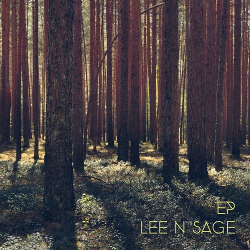 Lee N. Sage artwork