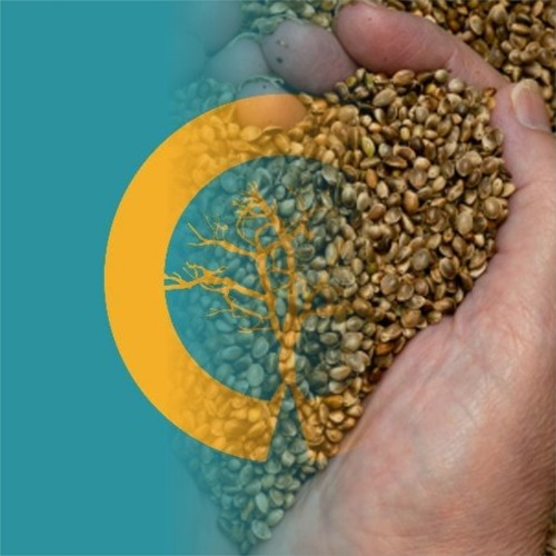 Workshop Presented By Nick Read From English Hemp