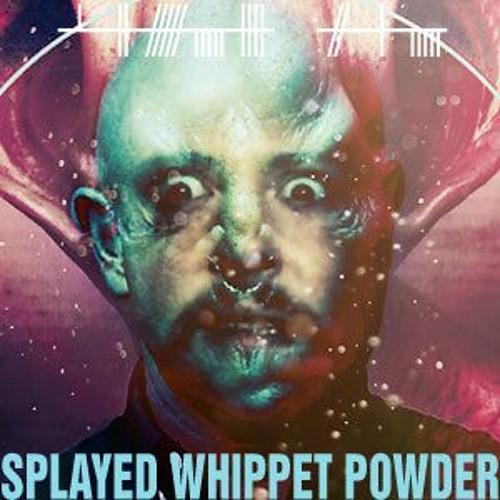 Splayed Whippet Powder