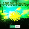 3600000 Followers