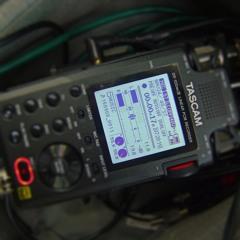 Tascam DR-100mkIII - Mic Input Test