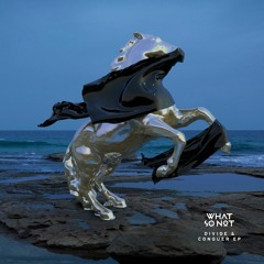 What So Not - Adieu