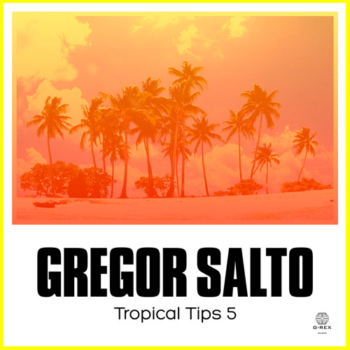 Tropical Tips 5 Album Mix (Gregor Salto Continuous DJ Mix)