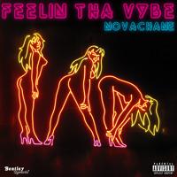Feelin Tha Vybe - Novachane