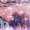 Che Nelle Sakura Album Cover
