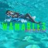 Nicki Minaj - Wamables @kingdreshon Freestyle mp3