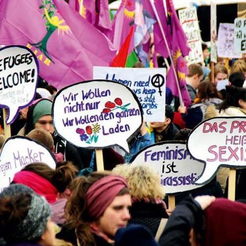 One Solution: Feminism? Feministische Strategien Gegen Den Rechtsruck Und Die AfD