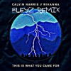Calvin Harris Feat Rihanna - This Is What You Came For (Bleyz Remix)