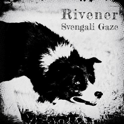02 Svengali Gaze