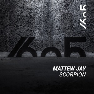 Mattew Jay - Scorpion (Original Mix)