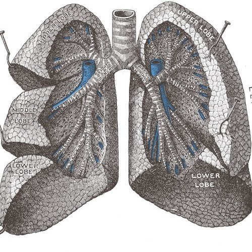Acute respiratory distress syndrome: detection, outcomes and prognoses