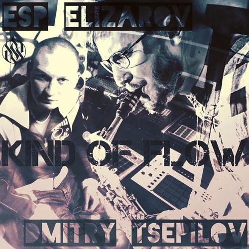 Esp Elizarov & Dmitry Tsepilov - City's Cobweb