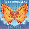 The Strumbellas Spirits Cover Mp3