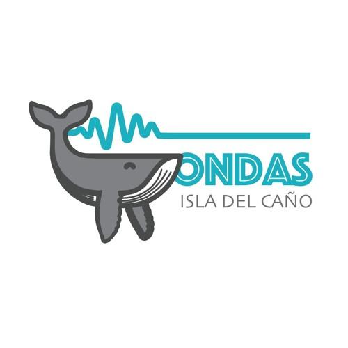 Proyecto Ondas en Isla del Caño