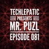 MR PUZL - Techlepatic Mix
