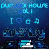 DJ ENVY - PUNJABI HOUSE VOLUME 1