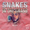Snakes In The Grass - Max Diesel