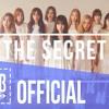 [OFFICIAL AUDIO]WJSN - 'SECRET' VIET COVER