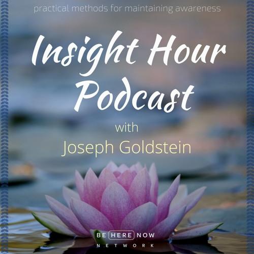 Joseph Goldstein - Insight Hour - Ep. 1 - Zero Centre Of Emptiness