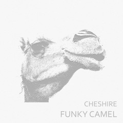 Funky Camel (FREE DOWNLOAD)