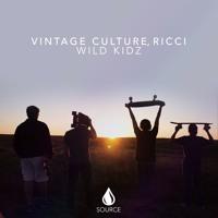 Vintage Culture - Wild Kidz