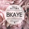 Buzzzmix Vol. 33 - BKAYE