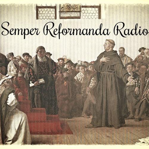 SRR #12   Interview with Timothy Kauffman Regarding Tim Keller, Hermeneutics, and More!