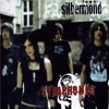 Silbermond - Symphonie (Cover)