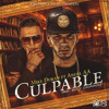Culpable (feat. Anuel Aa) - Culpable (feat. Anuel Aa) - Single [iTunes Plus]