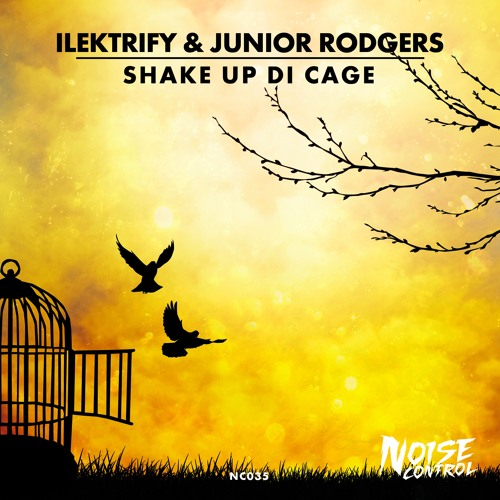 Ilektrify & Junior Rodgers - Shake Up Di Cage
