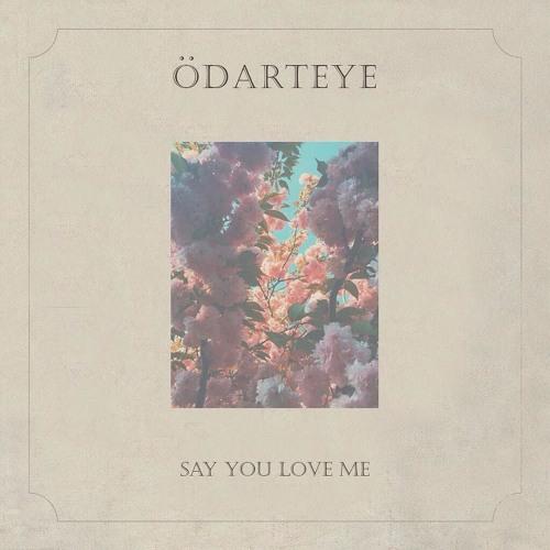 Say You Love Me - Odarteye (prod by Kuvie)